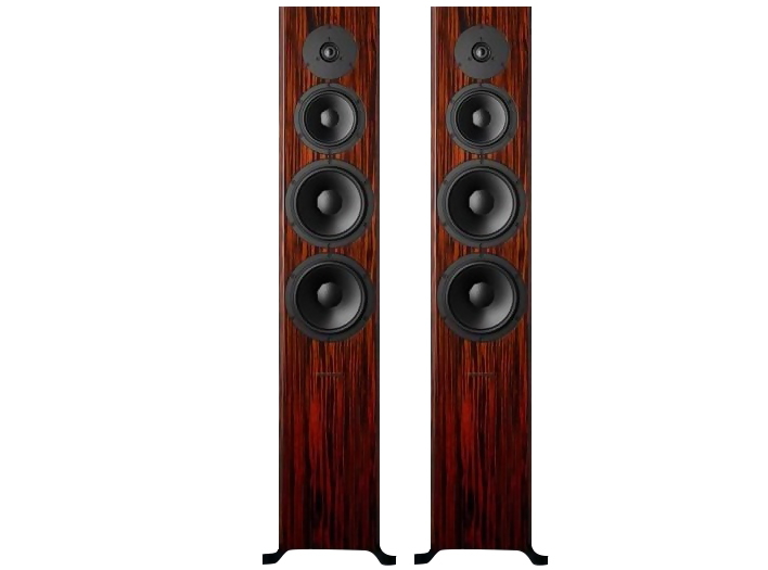 Dynaudio Focus 60 XD Rosewood High Gloss