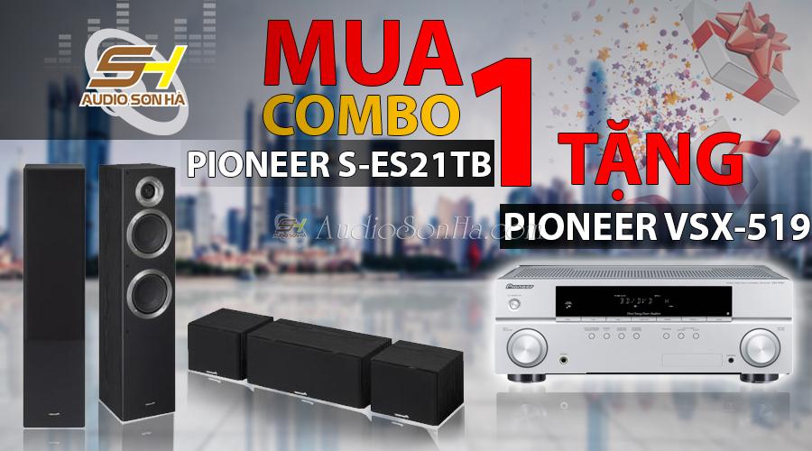 Pioneer S- ES 21TB