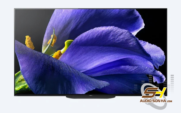 A9G | MASTER Series | OLED | 4K Ultra HD | HDR| Smart TV