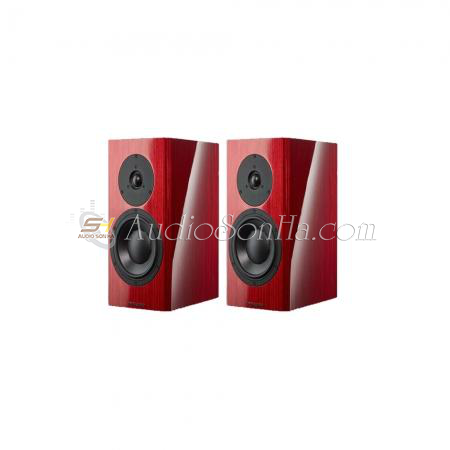 Dynaudio Special Forty (Cặp)
