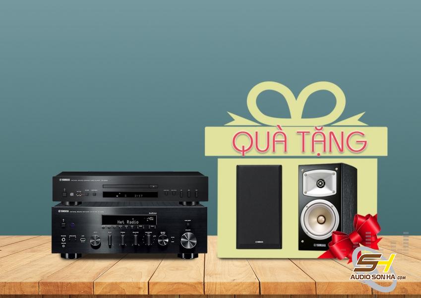 Hệ thống nghe nhạc Yamaha R-N803 và CD-S300